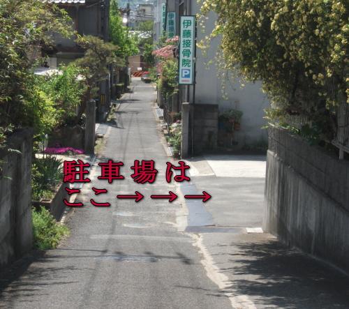 image552